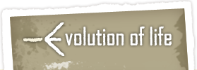 Logo for Evolution of Life