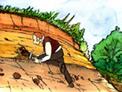 Darwin sur les traces de l'évolution